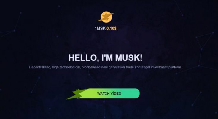 Musk Coin